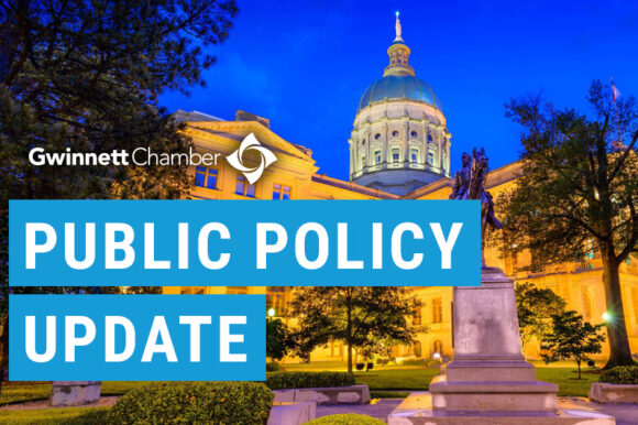 Georgia Legislative Session Update – March 25